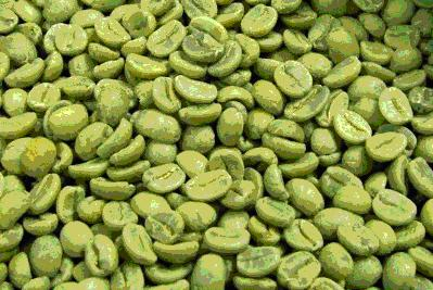 best green coffee