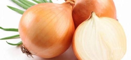 onion properties