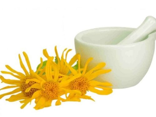 properties of arnica