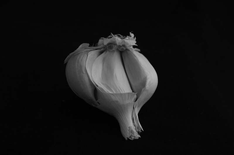 garlic for ingrown toenails