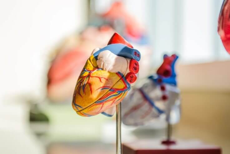 avoid cardiovascular problems